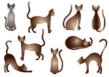 Gatos isolados vetor Fotografia de Stock Royalty Free