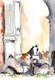 Gatos italianos en el bosquejo romano de la tinta y de la acuarela de las ruinas