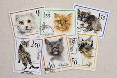 Gatos - jogo de selos do borne do vintage de Poland Fotografia de Stock Royalty Free