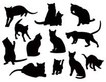 Gatos negros libre illustration