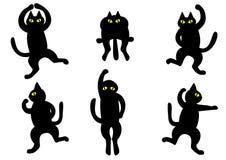 Gatos negros de baile Imagenes de archivo