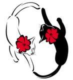 gatos preto e branco com flores Foto de Stock
