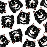Gatos pretos no fundo branco Fotos de Stock