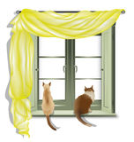 Gatos que miran fuera de la ventana 2 Imágenes de archivo libres de regalías