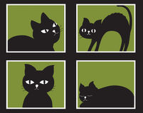 Gatos que olham para fora o indicador Fotos de Stock