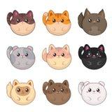 Gatos redondos dos desenhos animados bonitos, grupo isolado do vetor ilustração royalty free