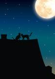 Gatos románticos bajo claro de luna, ejemplos del vector Foto de archivo