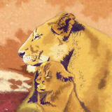 Gatos salvajes Familia de los leones Foto de archivo libre de regalías