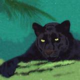Gatos salvajes pantera Fotos de archivo libres de regalías