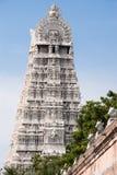 Gatter des Arunachala Tempels Lizenzfreie Stockbilder