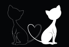 Gatti in bianco e nero Immagini Stock Libere da Diritti