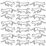 Gatti in bianco e nero illustrazione di stock