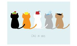 Gatti in cappelli Fotografia Stock