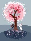Gatti della primavera Fotografia Stock Libera da Diritti