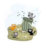 Gatti della via illustrazione vettoriale