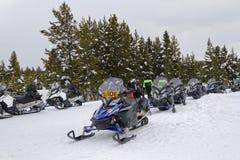 Gatti delle nevi in Yellowstone Fotografia Stock Libera da Diritti