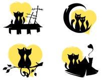 Gatti di marzo Fotografia Stock