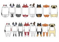 Gatti e cani stanti e di sedute con il bordo nelle loro bocche Immagini Stock