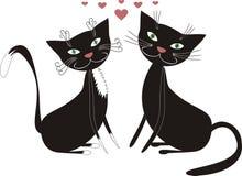 Gatti ed amore Fotografia Stock Libera da Diritti