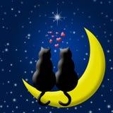 Gatti felici di giorno dei biglietti di S. Valentino nell'amore che si siede sulla luna Fotografia Stock Libera da Diritti