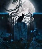 Gatti neri in cimitero royalty illustrazione gratis