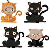 gatti neri nel carattere di Halloween del costume Immagine Stock Libera da Diritti