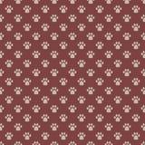 Gatti Paw Print immagine stock libera da diritti