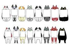 Gatti stanti e di sedute con il bordo nelle loro bocche Fotografia Stock Libera da Diritti