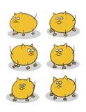 Gattini grassi Fotografie Stock Libere da Diritti