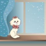 Gattino bianco che si siede su un davanzale della finestra Fotografie Stock