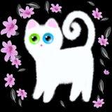 Gattino bianco con gli occhi multicolori su un fondo nero Fotografie Stock