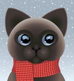 Gattino che porta sciarpa rossa fotografia stock
