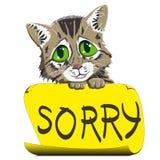 gattino con un segno che chiede il perdono Fotografia Stock