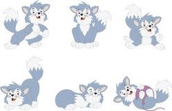Gattino del blu del fumetto Immagini Stock
