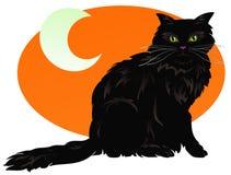 Gattino di Halloween Immagini Stock Libere da Diritti
