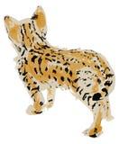 Gattino disegnato a mano della savanna Fotografie Stock Libere da Diritti