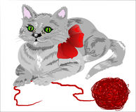 Gattino e filato Immagine Stock