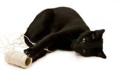 Gattino e stringa Fotografie Stock Libere da Diritti
