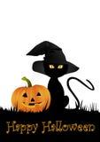 Gattino e zucca di Halloween Fotografia Stock