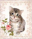 Gattino lanuginoso con le rose e la farfalla illustrazione vettoriale