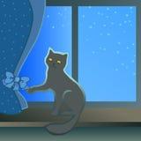 Gattino nero che si siede su un davanzale della finestra Immagini Stock