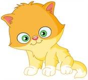Gattino persiano illustrazione vettoriale