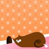 Gattino Prowling Fotografia Stock Libera da Diritti