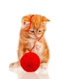 Gattino rosso Fotografie Stock Libere da Diritti