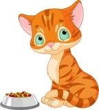 Gattino sveglio illustrazione di stock