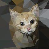 Gattino a triangolo di vettore Immagine Stock Libera da Diritti