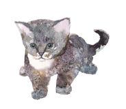 Gatto, acquerello, schizzo, pittura, animali, illustrazione fotografia stock
