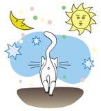Gatto bianco ambulante Immagine Stock Libera da Diritti