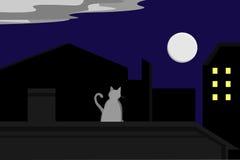 Gatto che guarda fisso alla luna Fotografia Stock Libera da Diritti