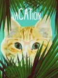 Gatto che guarda fuori dalle foglie di palma tropicali Collage d'avanguardia di zine, stampa di modo, manifesto fotografia stock